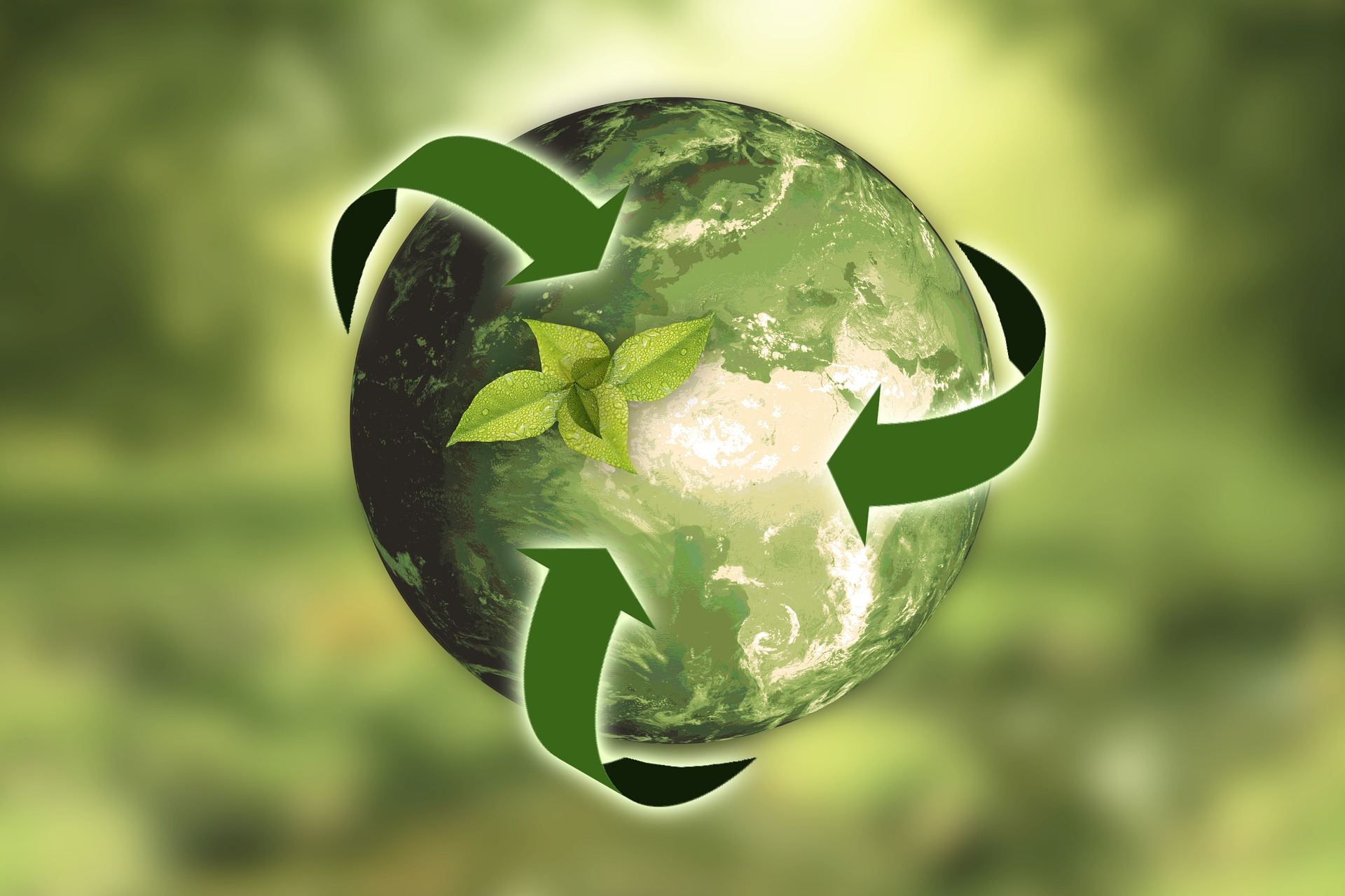 America Recycles Day is an opportunity to recognize the importance of recycling to our Nation's economy and environment