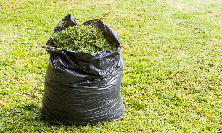 "The Fairfax County Board of Supervisors recently voted to ban the use of plastic bags for yard waste, with 2020 as a ""transition year."" Supervisor Pat Herrity (R-Springfield) voted ""no"" on the ban"