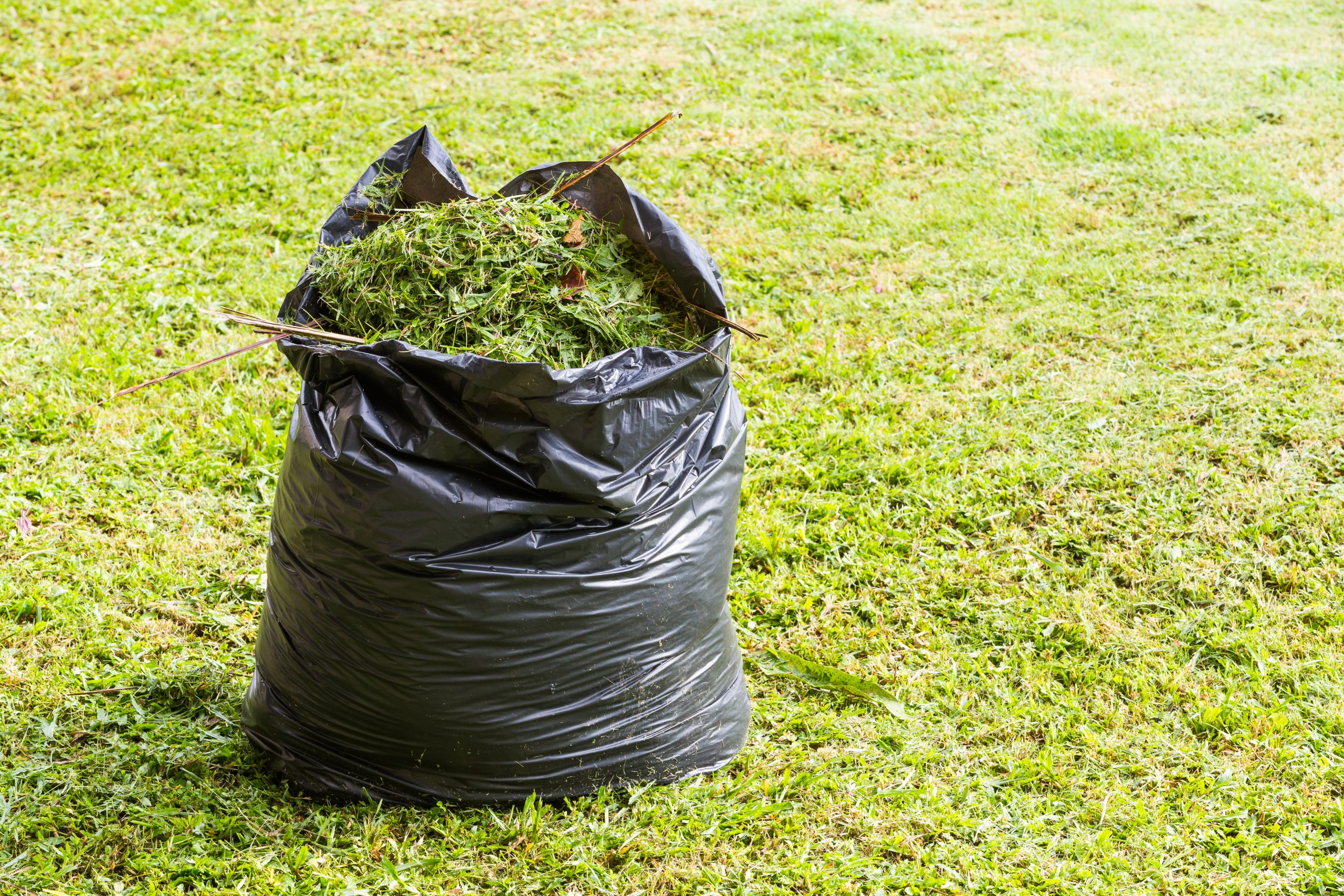 County Board Votes to Ban Plastic Bags for Yard Waste